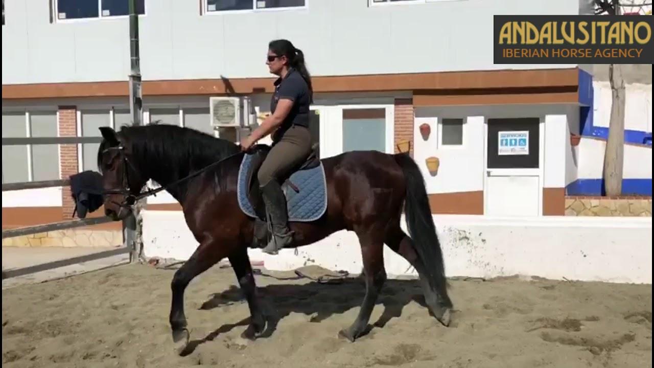 maxresdefault-36